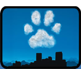 paw shaped cloud